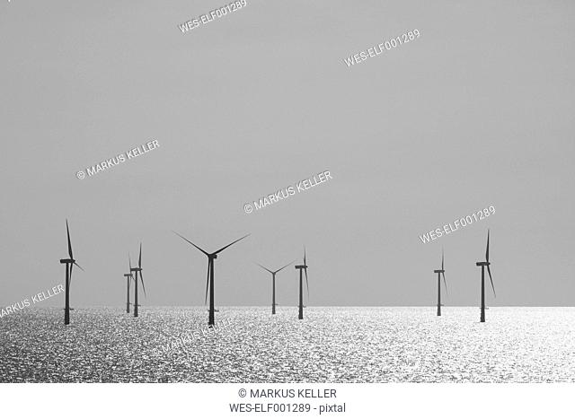 Belgium, West Flanders, Ostende, Zeebruegge, Thorntonbank Wind Farm