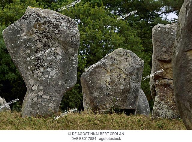 Megaliths of Carnac, stone alignments, Carnac, Brittany, France. Neolithic civilization, 5th-3rd millennium BC