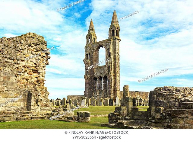 Ruins of St Andrews Cathedral and graveyard, St Andrews, Fife, Scotland
