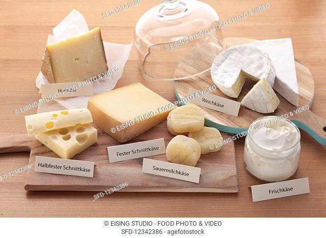 Hard cheese, soft cheese, semi-solid and solid sliced ??cheese, soured milk cheese