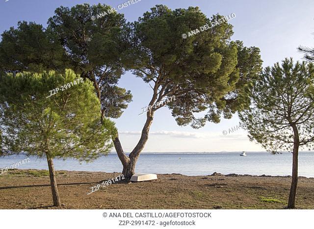 Sunset in Aucanada beach North of Majorca Balearic islands Spain