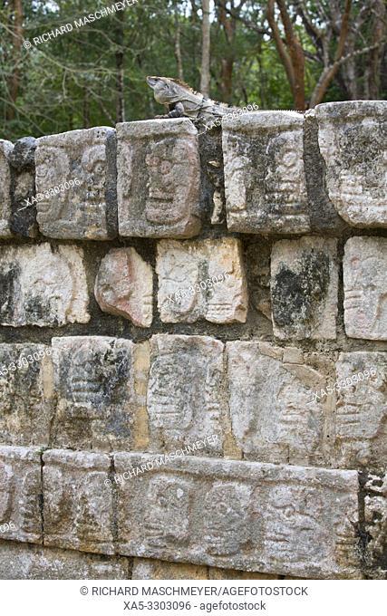 Platform of the Skulls (Tzompantli), Chichen Itza, UNESCO World Heritage Site, Yucatan, Mexico