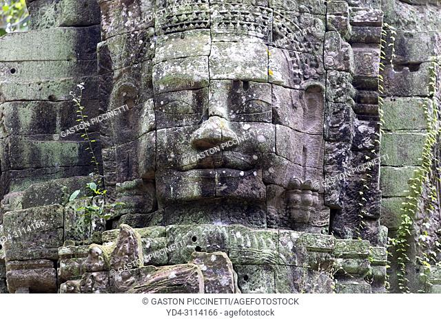 Stone faces at Ta Som temple, Angkor, Siem reap, Cambodia, built at the end of the 12th century for King Jayavarman VII. It is located north east of Angkor Thom...