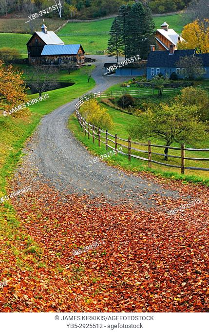 A leaf covered country road leads past charming farmland near Woodstock, Vermont