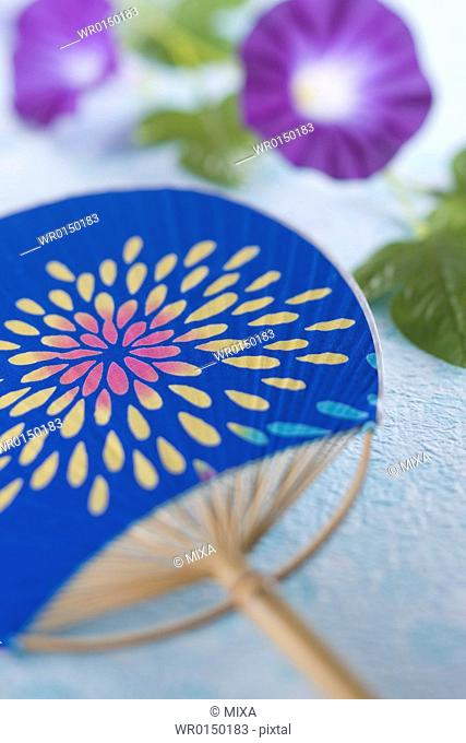 Fan and Morning Glory