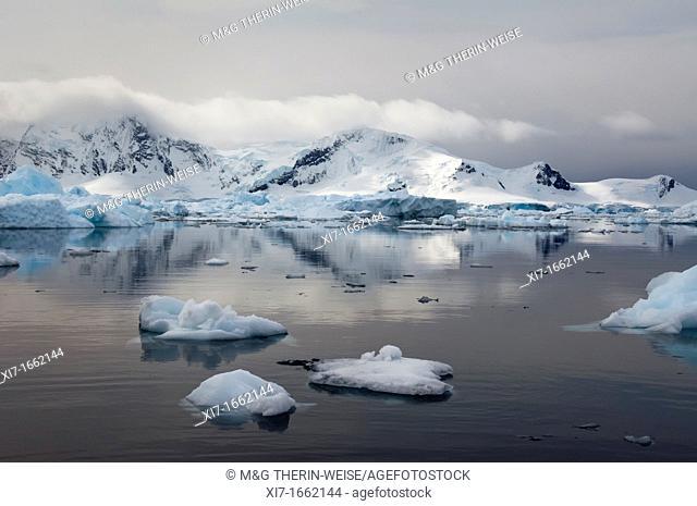 Bahia Paraiso Paradise Bay, Antarctic Peninsula
