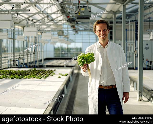 Portrait of a smiling scientist holding lettuce in a greenhouse