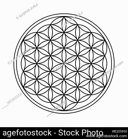 Flower of Life design. This spirituality symbol is part of the Sacred Geometry