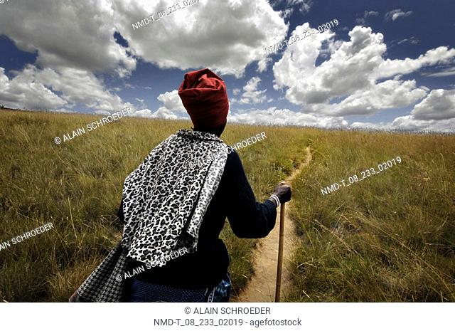 Rear view of a man walking on a field, Mautse, Sangoma Valley, Free State Province, South Africa