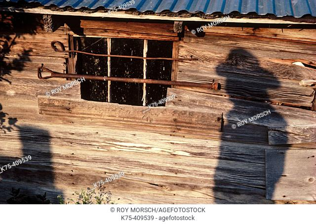 Shadow of a cowboy on old cabin. Montana, USA