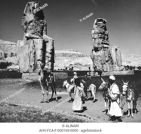 Bedouin donkey and camel in front of the Colossi of Memnon, Luxor (1388-1350 a.C. ca.), shot 1950-1960 by Clerici Fabrizio