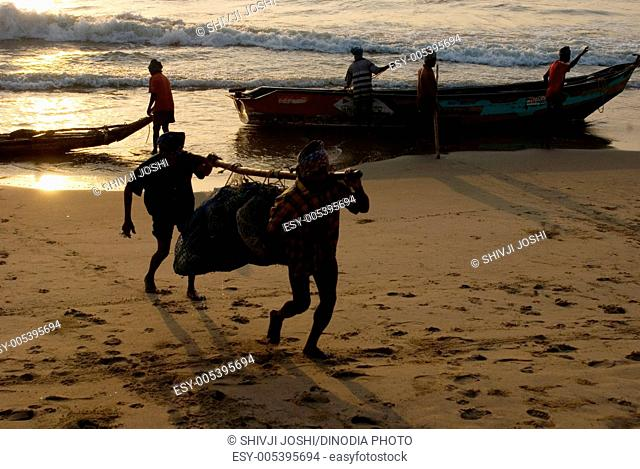 Fishermen carrying luggage on their shoulders at marina beach , Chennai , Tamil nadu , India