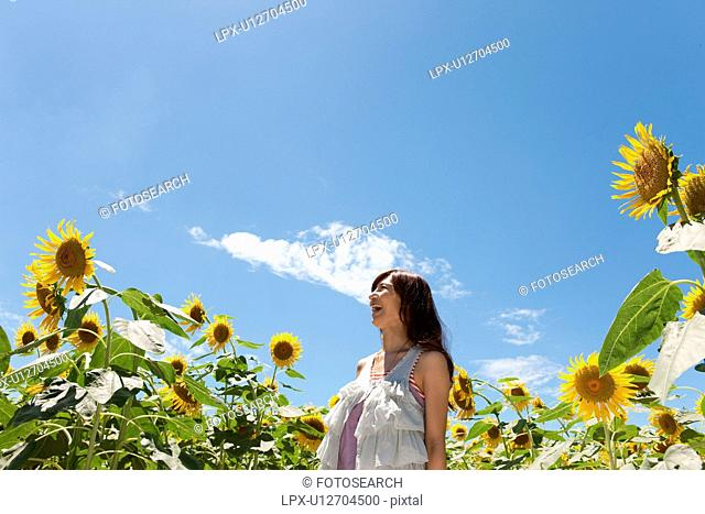 Young Woman Laughing in Sunflower Field