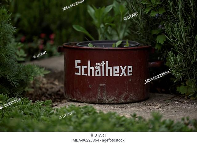 Old cooking pot with inscription 'Peeling Witch' in the garden as a flower pot
