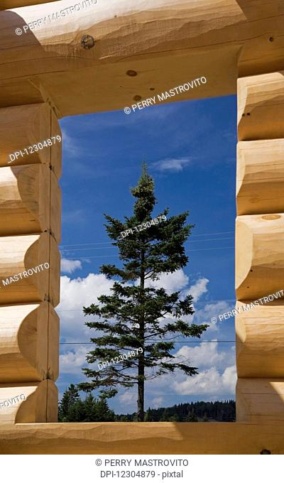 Window opening on unfinished Scandinavian Eastern white pine log cabin erected on builder's lot to adjust and ensure that all the logs fit properly; Quebec