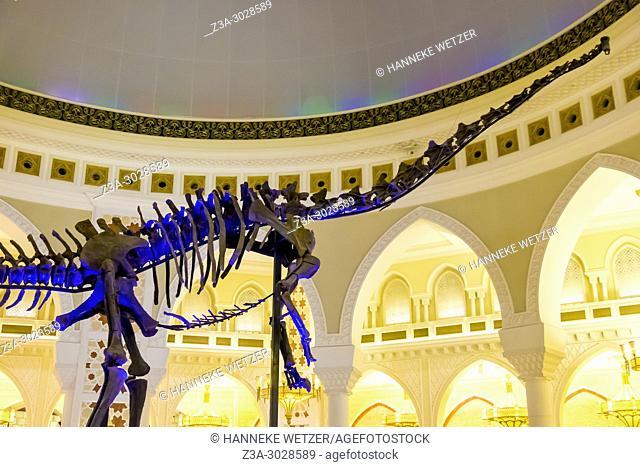 The Dubai Dino from the Late Jurassic (150-155 million years) in the Dubai Mall, Dubai