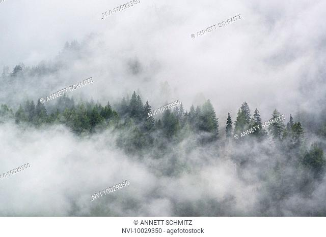 Fog in the Hohe Tauern National Park, Austria