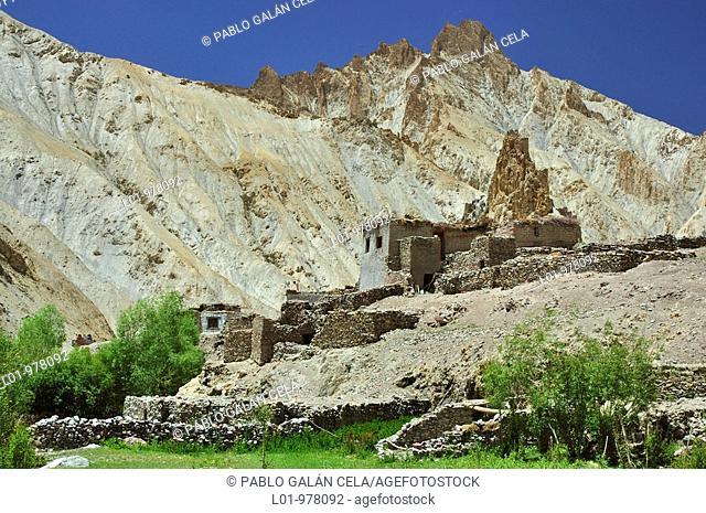 Hankar Gompa, valle del río Markha  Ladak India