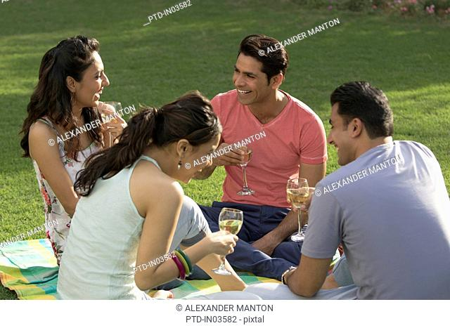 Friends at picnic laughing