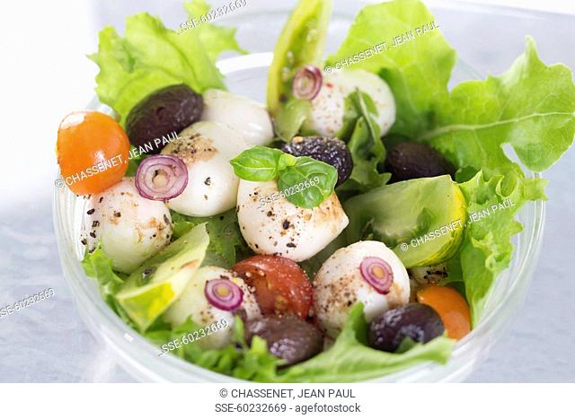Small mozzarella ball,olive,green tomato and cherry tomato salad