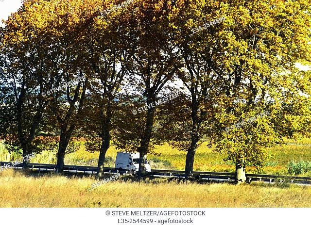"""A workman's 'camionette"""""""" on a French 'national' road in the fall of the year"""