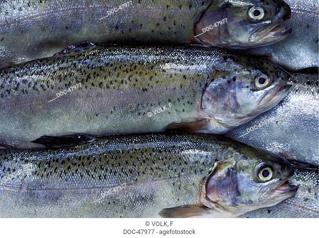 Trouts in a row