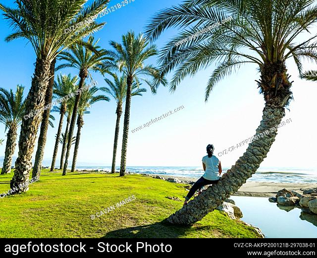 Woman sitting on the curved trunk of a palm tree on the Beach of