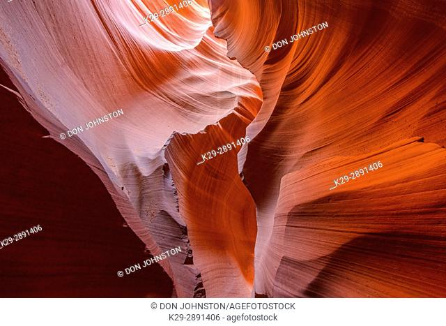Eroded Navajo Sandstone in the Lower Antelope Canyon, Page, Arizona, USA