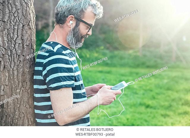 Bearded man leaning against tree trunk looking at smartphone