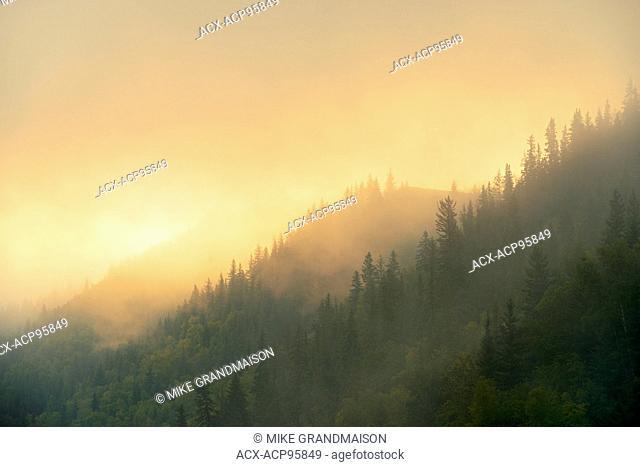 Morning fog along the Peace River Dunvegan Alberta Canada