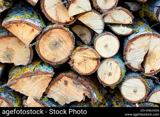 Stack of logs. Stack of firewood close up. Logs cuts prepared for fireplace. Woodpile. Wood for fireplace. Wood for winter. Firewood background