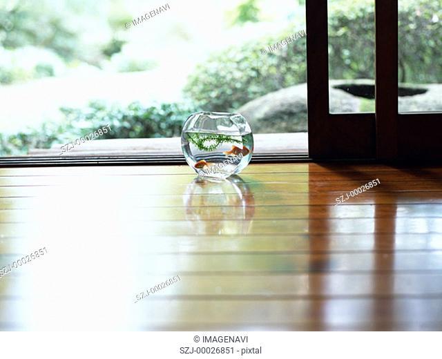Goldfish bowl on wooden floor