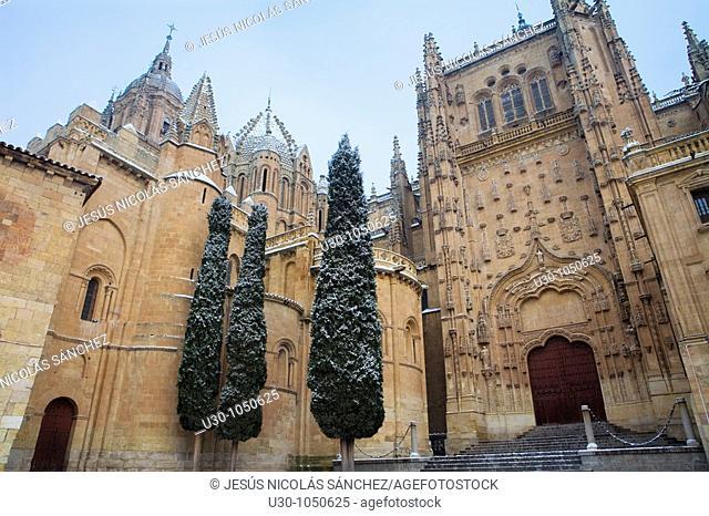 Cathedrals of Salamanca city in winter  World Heritage City in Castilla y León, Spain