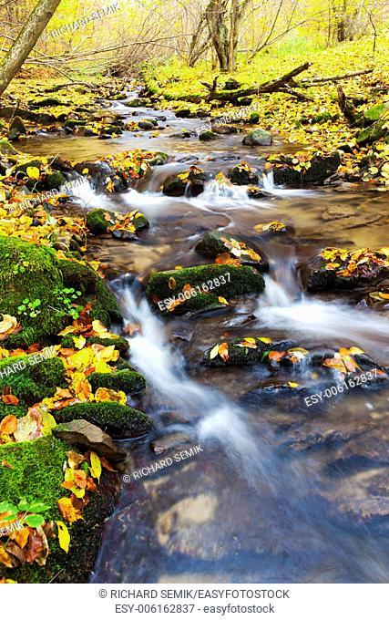 brook in autumn, Slovakia