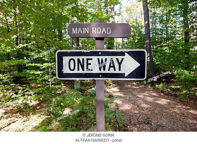One way sign in woods