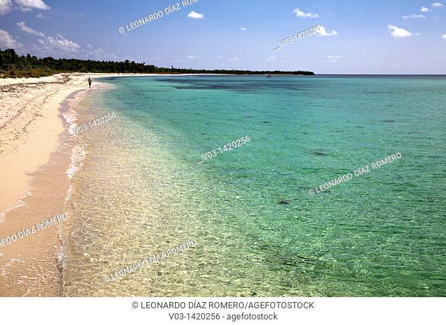Sand beach in Cozumel, Mexico