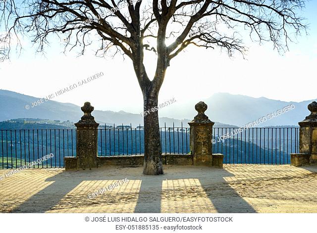 Lookout in Ronda, Málaga, Andalusia, Spain, Europe