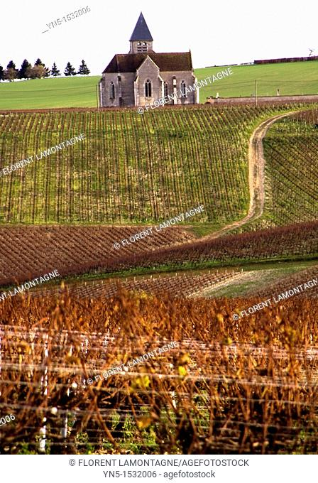 Church of the french village of Prehy, lost in the vineyards and famous for its wine of Chablis, nice view and cliché of Burgundy